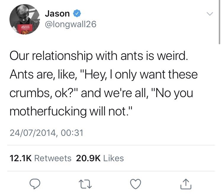 """Text - Jason @longwall26 Our relationship with ants is weird. Ants are, like, """"Hey, I only want these crumbs, ok?"""" and we're all, """"No you motherfucking will not."""" 24/07/2014, 00:31 12.1K Retweets 20.9K Likes"""