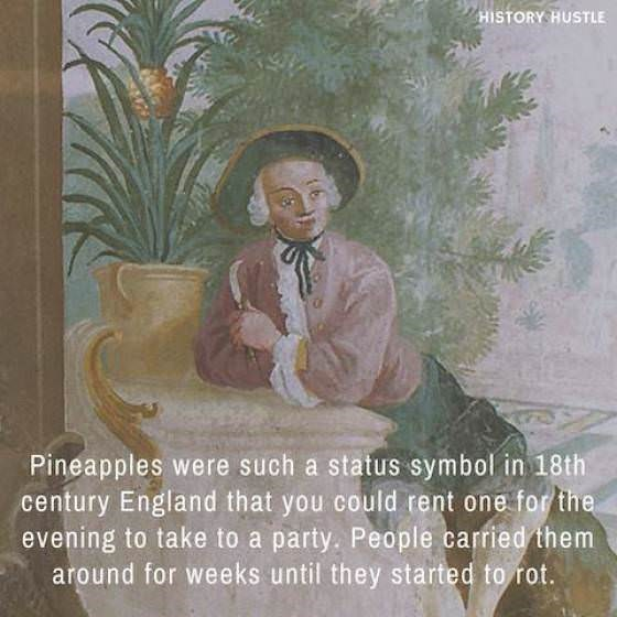 Text - HISTORY HUSTLE Pineapples were such a status symbol in 18th century England that you could rent one for the evening to take to a party. People carried them around for weeks until they started to rot.