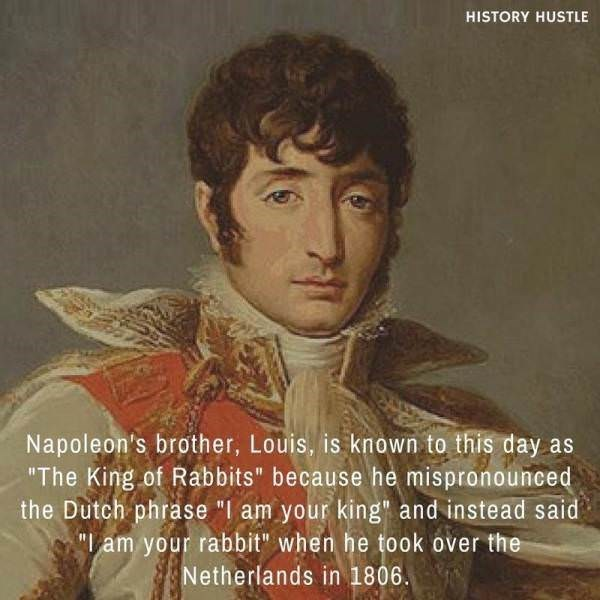 """Portrait - HISTORY HUSTLE Napoleon's brother, Louis, is known to this day as """"The King of Rabbits"""" because he mispronounced the Dutch phrase """"I am your king"""" and instead said """"am your rabbit"""" when he took over the Netherlands in 1806"""