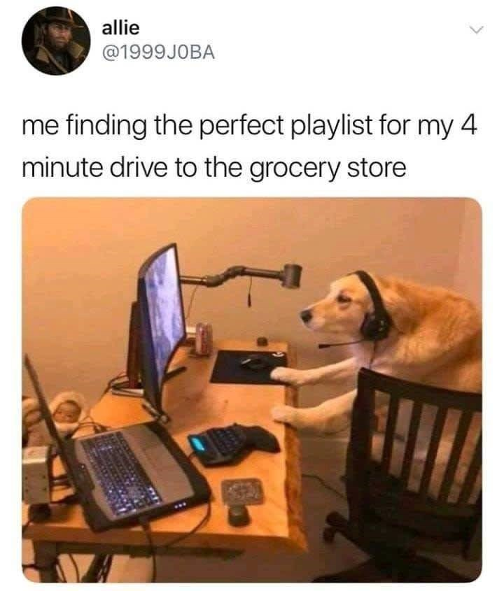 Product - allie @1999JOBA me finding the perfect playlist for my 4 minute drive to the grocery store