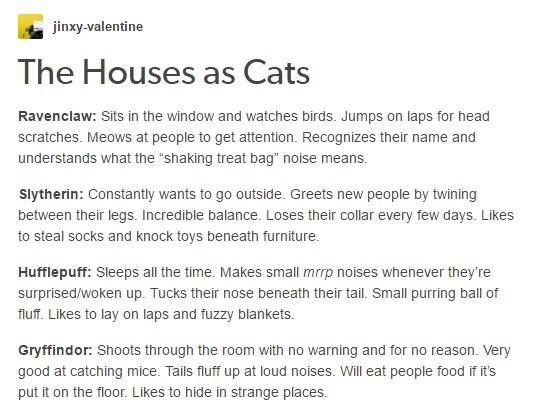 wholesome meme comparing the Harry Potter houses to cats