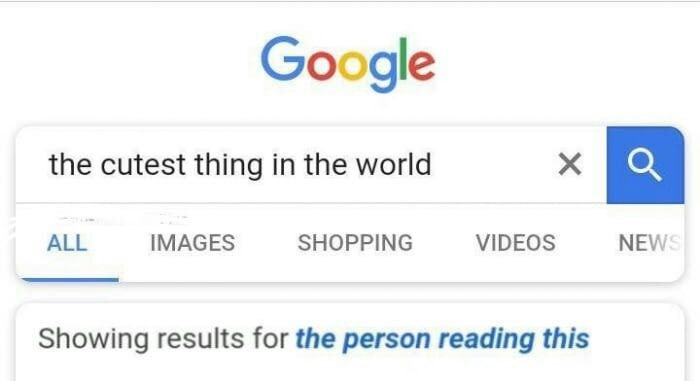 wholesome meme of a google search looking for the cutest thing in the world and the result is the person reading this
