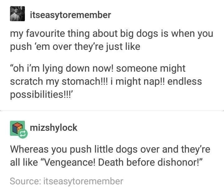 """Text - itseasytoremember my favourite thing about big dogs is when you push 'em over they're just like """"oh i'm lying down now! someone might scratch my stomach!! i might nap!! endless possibilities!!' mizshylock Whereas you push little dogs over and they're all like """"Vengeance! Death before dishonor!"""" Source: itseasytoremember"""