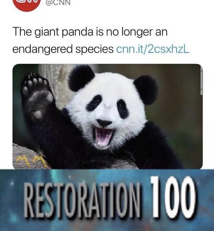 Panda - @CNN The giant panda is no longer an endangered species cnn.it/2csxhzL RESTORATION T00