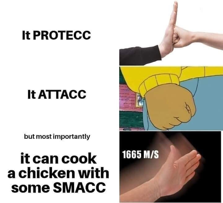 Joint - It PROTECC It ATTACC but most importantly |1665 M/S it can cook a chicken with some SMACC