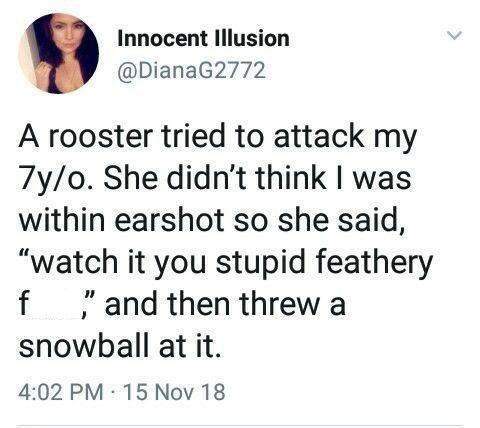 silly meme about a savage 7 year old girl fighting a rooster