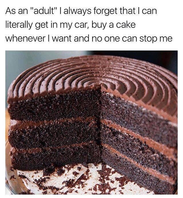 "Caption that reads, ""As an 'adult' I always forget that I can buy a cake whenever I want and no one can stop me"" above a pic of a chocolate cake"
