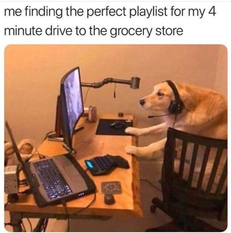 "Caption that reads, ""Me finding the perfect playlist for my four-minute drive to the grocery store"" above a pic of a golden retriever sitting at a computer desk"
