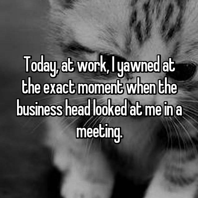 Cat - Today at work, yawned at the exact moment when the business head looked at me ina meeting.