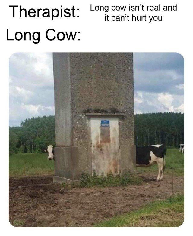 "Caption that reads, ""Therapist: Long isn't real and it can't hurt you; Long Cow: ..."" above a pic of Long Cow"