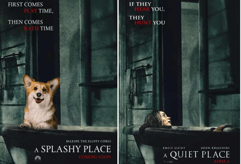 Pembroke welsh corgi - FIRST COMES IF THEY HEAR YOU PLAY TIME, THEY THEN COMES BATH TIME HUNT YOU MAXINE THE FLUFFY CORGI A SPLASHY PLACE EMILY LUNT JOHN KRASINSKI QUIET PLACE A COMING SOON APRIL 6