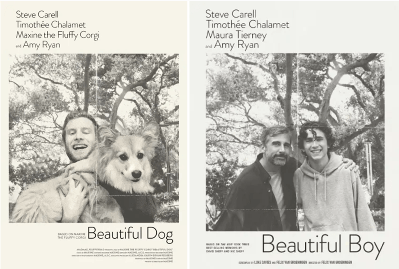 Photograph - Steve Carell Timothée Chalamet Maura Tierney ndAmy Ryan Steve Carell Timothée Chalamet Maxine the Fluffy Corgi nd Amy Ryan Beautiful Dog Beautiful Boy BASED ON MAXINE THE FLUFFY CORGI BASED ON EST SELUNG WENORS DAVD SHEFF AND NC S MiW YRKTIMES MADMAR FUFFROAD MARINE THE FLUY cORAUTFUuL DOG MARINE MARNE AeACE N ANROSEEPG AHEASC ALC AS sOPLUNE DAVES FELIX WAN GROENINGEN a n FELIX VAN GROENINGEN