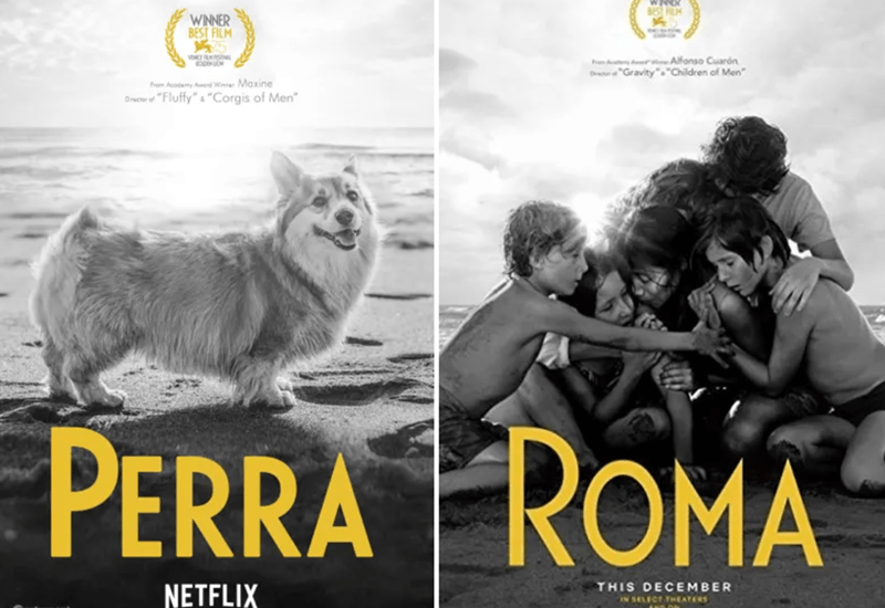 "Canidae - B WINNER BEST FILM vEHCE FM A Alfonso Cuarón Gravity""""Children of Men Frem Acodemy Ad Wi Maxine O of""Fluffy""""Corgis of Men"" PERRA ROMA THIS DECEMBER NETFLIX IN SELECT THEATERS"