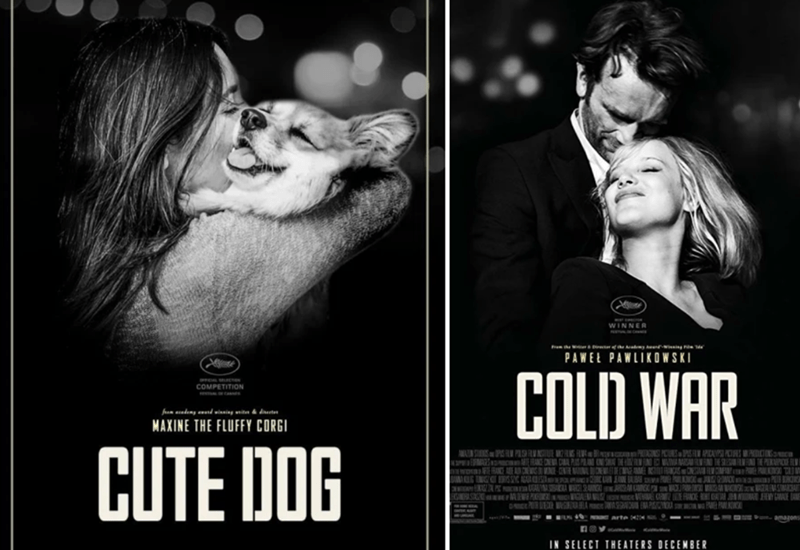 Poster - WINNER he & f e ady i rie PAWE PAWLIKOWSKI e COLD WAR AL COMPETITION fm acedeny auad winning ariter & direeter MAXINE THE FLUFFY CORGI CUTE DOG PPASR N ISICA PIC C LIN N E A NE A O M P IA W ES rME A ce W RDE W s0 EP arte O amagons nov IN SELECT THEATERS DECEMBER
