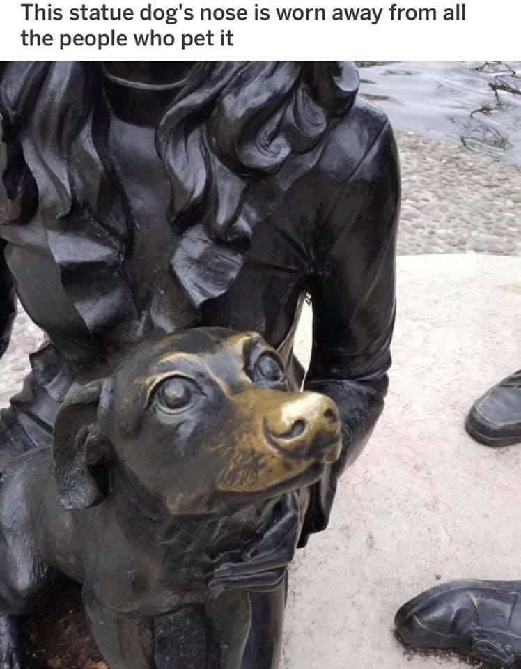 wholesome meme - Sculpture - This statue dog's nose is worn away from all the people who pet it