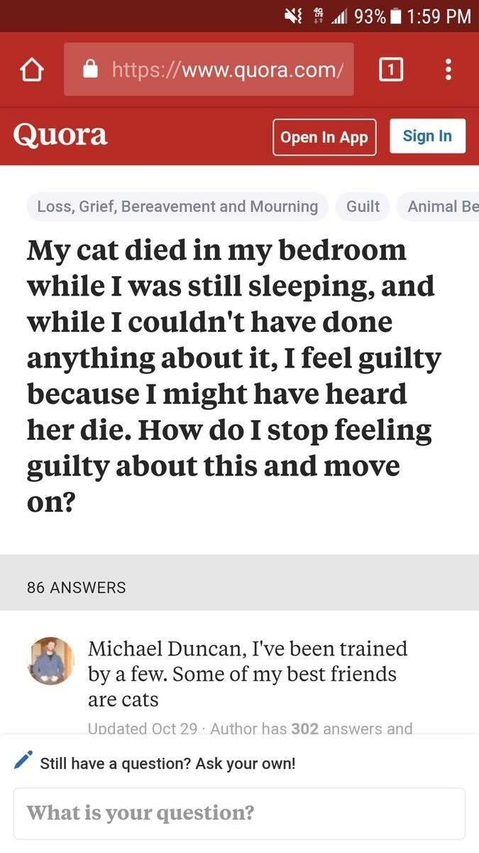 Text - 93% 1:59 PM http://www.quora.com/ Quora Sign In Open In App Animal Be Loss, Grief, Bereavement and Mourning Guilt My cat died in my bedroom while I was still sleeping, and while I couldn't have done anything about it, I feel guilty because I might have heard her die. How do I stop feeling guilty about this and move on? 86 ANSWERS Michael Duncan, I've been trained by a few. Some of my best friends are cats Updated Oct 29 Author has 302 answers and Still have a question? Ask your own! What