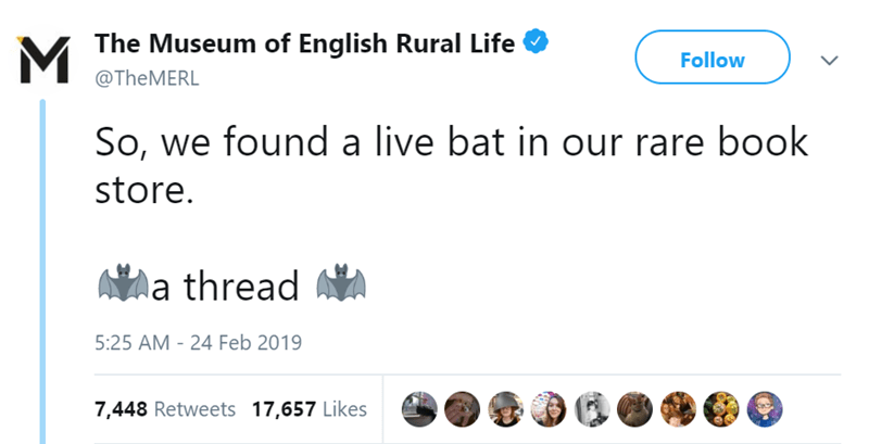 Text - The Museum of English Rural Life Follow @TheMERL So, we found a live bat in our rare book store. a thread 5:25 AM - 24 Feb 2019 7,448 Retweets 17,657 Likes
