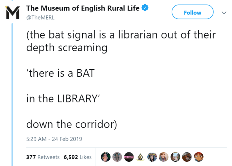 Text - MThe Museum of English Rural Life Follow @THEMERL (the bat signal is a librarian out of their depth screaming there is a BAT in the LIBRARY down the corridor) 5:29 AM 24 Feb 2019 377 Retweets 6,592 Likes GO