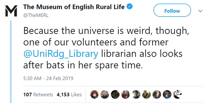 Text - MThe Museum of English Rural Life Follow @TheMERL Because the universe is weird, though, one of our volunteers and former @UniRdg_Library librarian also looks after bats in her spare time. 5:30 AM - 24 Feb 2019 107 Retweets 4,153 Likes