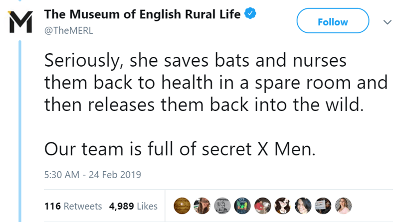 Text - M The Museum of English Rural Life T Follow @TheMERL Seriously, she saves bats and nurses them back to health in a spare room and then releases them back into the wild. Our team is full of secret X Men. 5:30 AM - 24 Feb 2019 n stireh 116 Retweets 4,989 Likes
