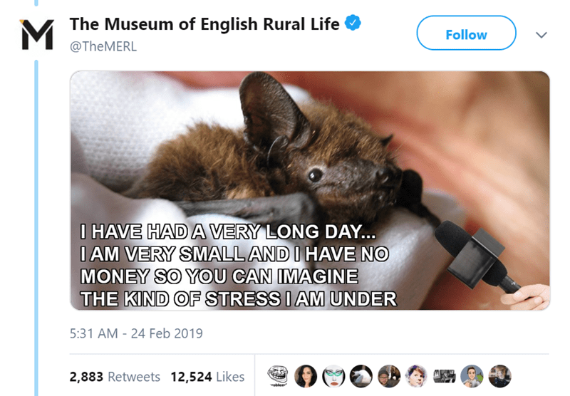 Text - The Museum of English Rural Life Follow @TheMERL I HAVE HAD A VERY LONG DAY... IAM VERY SMALL AND I HAVE NO ONEY SO YOU CAN IMAGINE THE KIND OF STRESS I AM UNDER 5:31 AM - 24 Feb 2019 2,883 Retweets 12,524 Likes voble