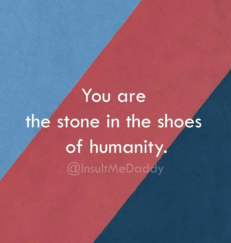 Text - You are the stone in the shoes of humanity. @InsultMeDaddy