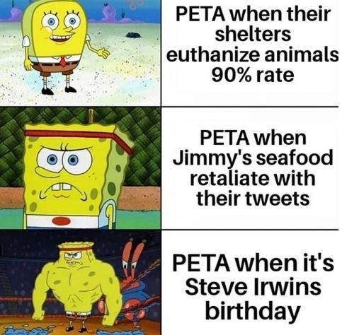 Cartoon - PETA when their shelters euthanize animals 90% rate PETA when Jimmy's seafood retaliate with their tweets PETA when it's Steve Irwins birthday