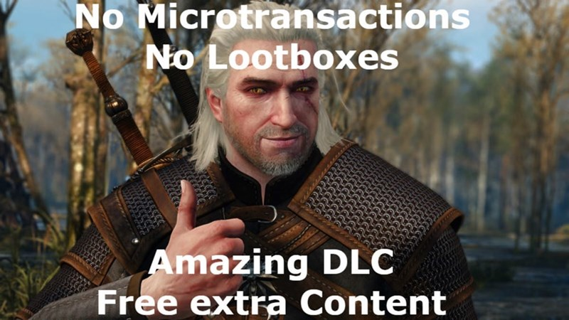 funny meme about The Witcher video game