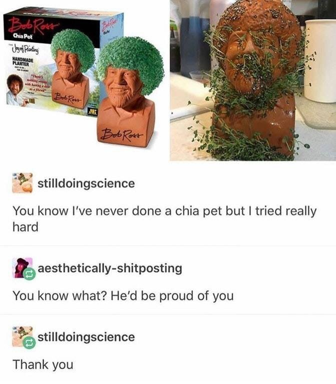 picture of bob ross chia planter with plants growing all over sculpture funny tumblr post You know I've never done a chia pet but I tried really hard aesthetically-shitposting You know what? He'd be proud of you stilldoingscience Thank you