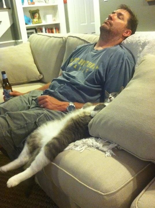 Pic of a cat sleeping next to a guy on its back in a similar manner