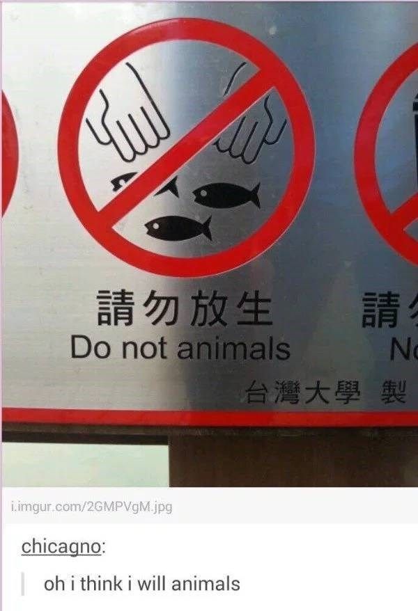 """Translated sign from Chinese that reads, """"Do not animals;"""" someone comments below on Tumblr, """"Oh I think I will animals"""""""