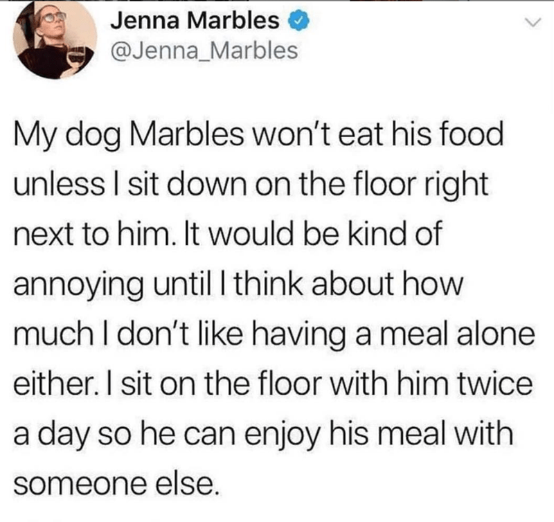 dog owner sits with dog to eat meals twitter dog meme