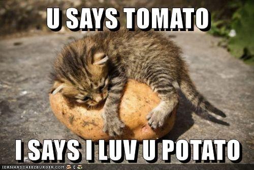 U SAYS TOMATO
