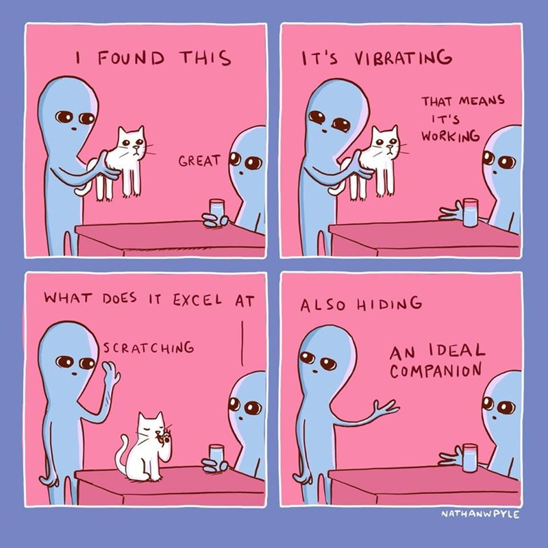 strange planet comic - Text - I FOUND THIS IT'S VIRRATING THAT MEANS IT'S WORKING GREAT WHAT DOES IT EXCEL AT ALSO HIDING AN IDEAL COMPANION SCRATCHING NATHANWPYLE