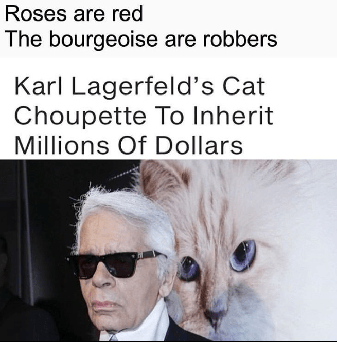 funny meme about karl lagerfeld's cat inheriting millions.