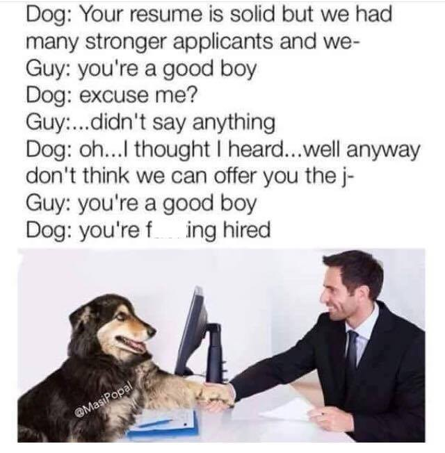 Stock photo of a guy shaking a dog's paw with caption about him getting hired because he said the dog was a good boy