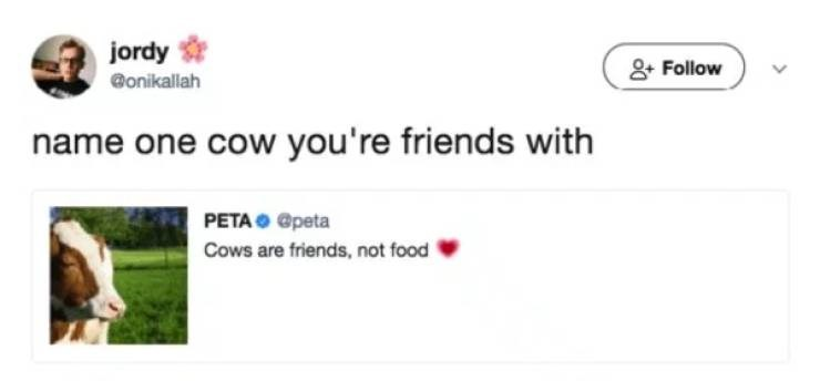 Text - jordy Follow onikallah name one cow you're friends with PETA @peta Cows are friends, not food