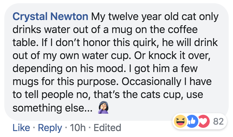Text - Crystal Newton My twelve year old cat only drinks water out of a mug on the coffee table. If I don't honor this quirk, he will drink out of my own water cup. Or knock it over, depending on his mood. I got him a few mugs for this purpose. Occasionally I have to tell people no, that's the cats cup, use something else... D 82 Like Reply 10h Edited