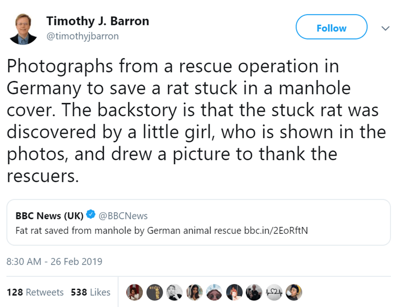 Text - Timothy J. Barron @timothyjbarron Follow Photographs from a rescue operation in Germany to save a rat stuck in a manhole cover. The backstory is that the stuck rat was discovered by a little girl, who is shown in the photos, and drew a picture to thank the rescuers. BBC News (UK) @BBCNews Fat rat saved from manhole by German animal rescue bbc.in/2EoRftN 8:30 AM - 26 Feb 2019 RESA 128 Retweets 538 Likes