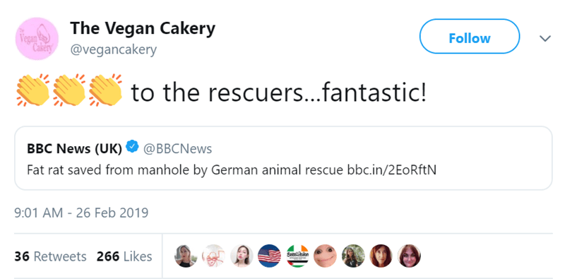 """Text - The Vegan Cakery Vega """" Cakery@vegancakery Follow to the rescuers...fantastic! BBC News (UK) Fat rat saved from manhole by German animal rescue bbc.in/2 EoRftN @BBCNews 9:01 AM - 26 Feb 2019 36 Retweets 266 Likes Evessen"""