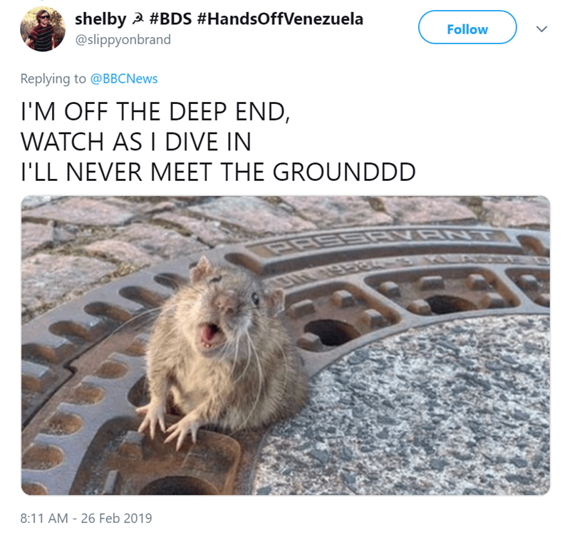 Gopher - shelby #BDS #HandsOffVenezuela @slippyonbrand Follow Replying to @BBCNews I'M OFF THE DEEP END, WATCH AS I DIVE IN I'LL NEVER MEET THE GROUNDDD SRIN RNT OASEE 8:11 AM - 26 Feb 2019