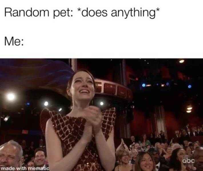 People - Random pet: *does anything* Me: abc made with mematic