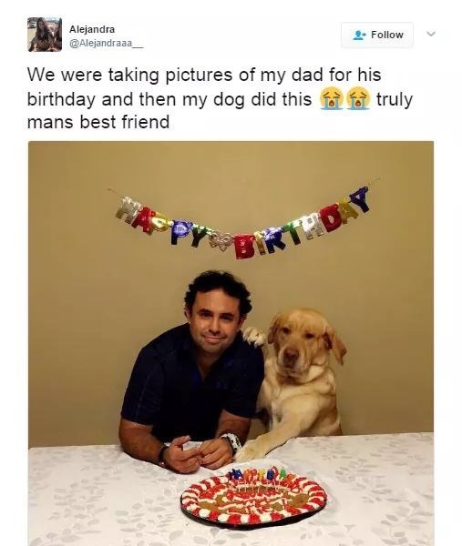Canidae - Alejandra @Alejandraaa Follow We were taking pictures of my dad for his birthday and then my dog did this mans best friend truly Pys RTDAY