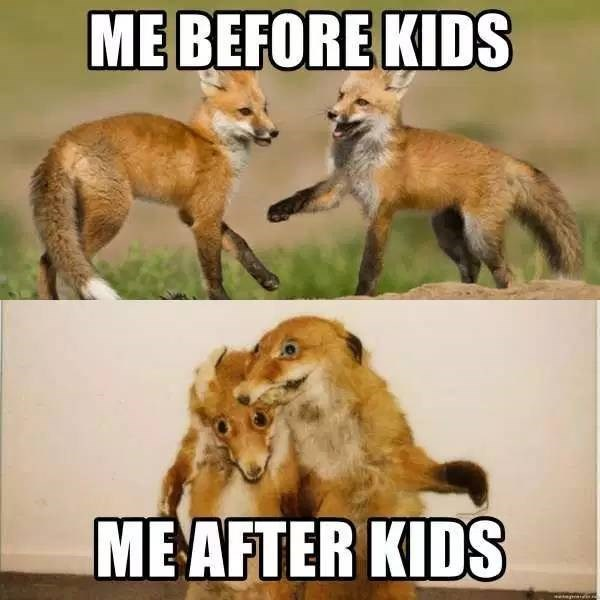 Mammal - MEBEFORE KIDS MEAFTER KIDS