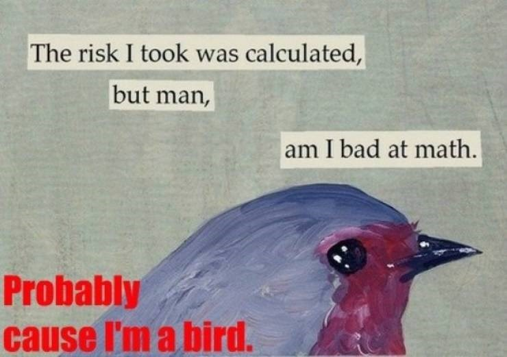 Bird - The risk I took was calculated, but man, am I bad at math. Probably cause I'm a bird.