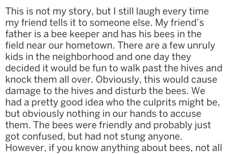 Text - This is not my story, but I still laugh every time my friend tells it to someone else. My friend's father is a bee keeper and has his bees in the field near our hometown. There are a few unruly kids in the neighborhood and one day they decided it would be fun to walk past the hives and knock them all over. Obviously, this would cause damage to the hives and disturb the bees. We had a pretty good idea who the culprits might be, but obviously nothing in our hands to accuse them. The bees we