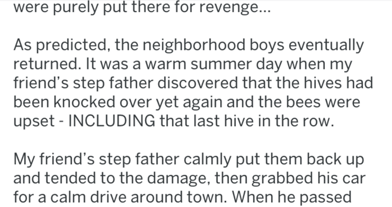 Text - were purely put there for revenge... As predicted, the neighborhood boys eventually returned. It was a warm summer day when my friend's step father discovered that the hives had been knocked over yet again and the bees were upset - INCLUDING that last hive in the row. My friend's step father calmly put them back up and tended to the damage, then grabbed his car for a calm drive around town. When he passed