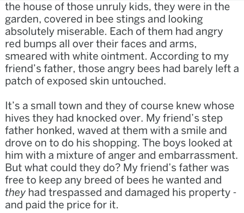 Text - the house of those unruly kids, they were in the garden, covered in bee stings and looking absolutely miserable. Each of them had angry red bumps all over their faces and arms, smeared with white ointment. According to my friend's father, those angry bees had barely left a patch of exposed skin untouched. It's a small town and they of course knew whose hives they had knocked over. My friend's step father honked, waved at them with a smile and drove on to do his shopping. The boys looked a