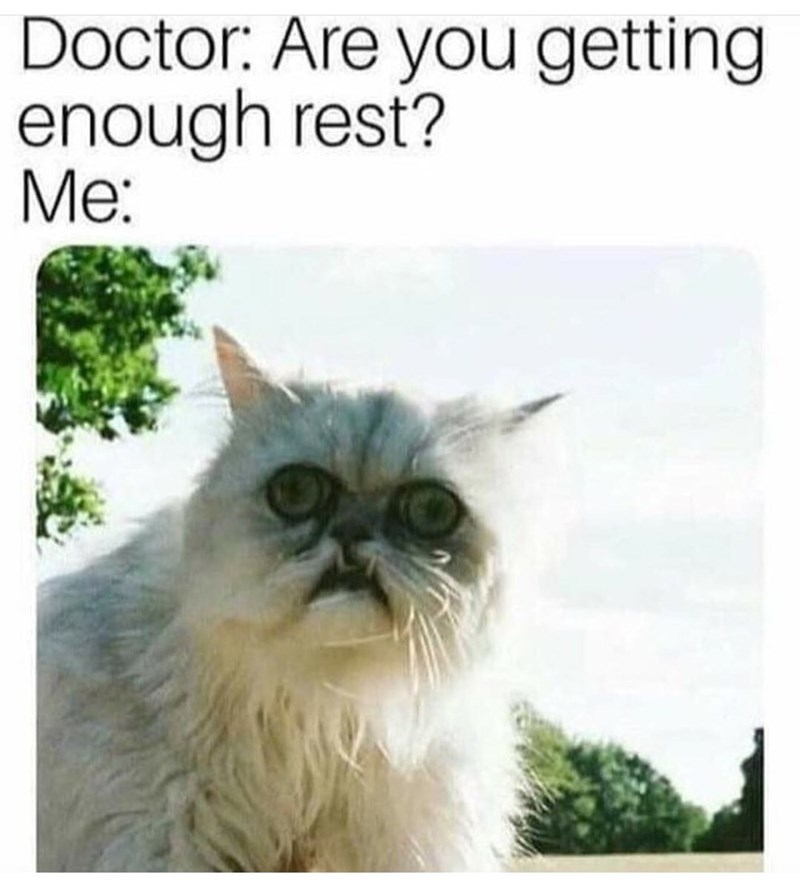 "Caption that reads, ""Doctor: Are you getting enough rest? Me: ..."" above a pic of a cat with a weird-looking face"