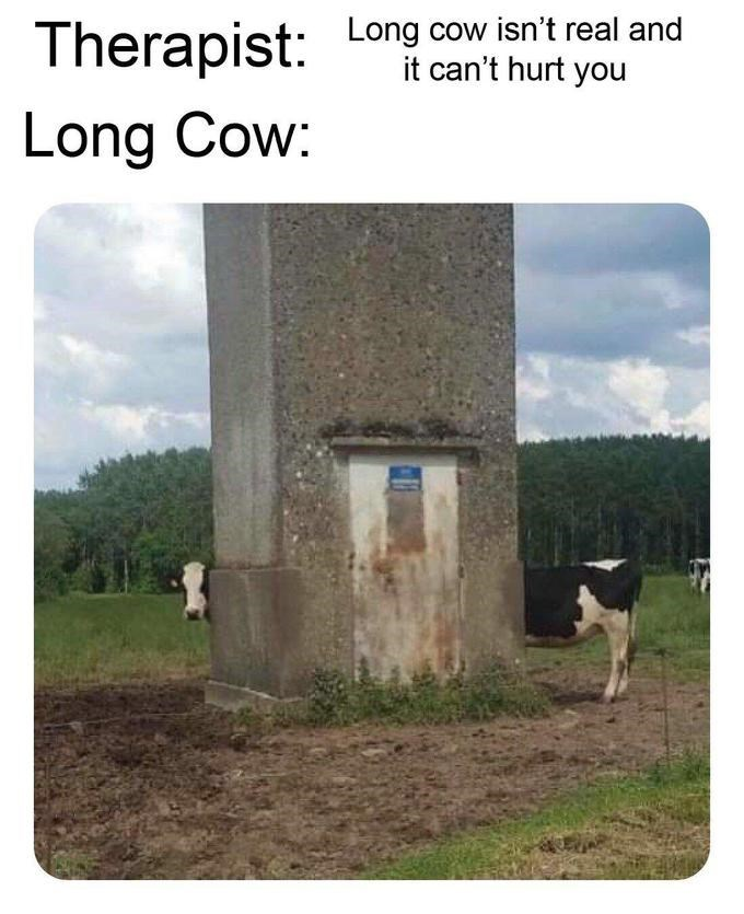 """Caption that reads, """"Therapist: Long cow isn't real and it can't hurt you; Long cow: ..."""" above a pic of a long cow peering around a concrete post"""